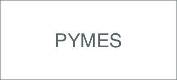 Curso de organización y dirección de PyMES