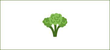 Curso de sector agroalimentario