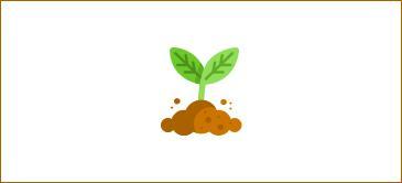 Curso de ecología para niños