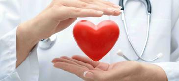 Cardiovascular pathology training